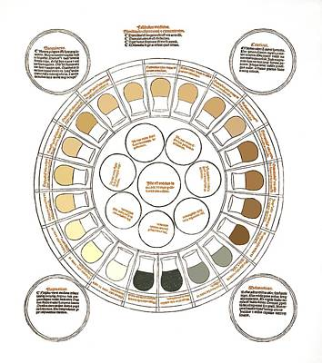 Medicine Wheel Photograph - Medieval Urine Wheel And The Four Humours by Sheila Terry