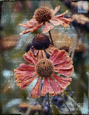 Photograph - Memories by Karen Lewis