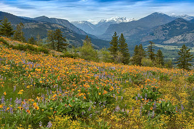 Cascades Photograph - Methow Valley Spring by Bill Johnson