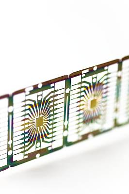 Integrated Photograph - Microprocessor Chips by Pasieka