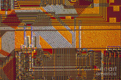 Integrated Photograph - Microprocessors by Michael W. Davidson