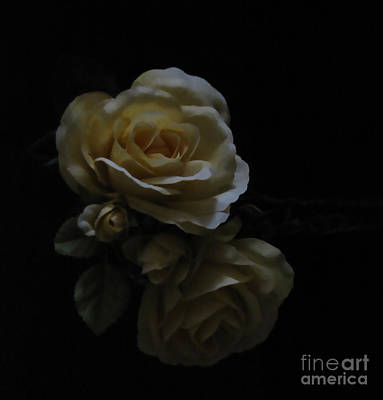 Midnight Roses Art Print by Cedric Hampton
