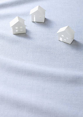 Y120831 Photograph - Miniature Houses (ecology Image) by sozaijiten/Datacraft
