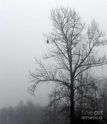 Misty Morning Vigil Art Print by KD Johnson