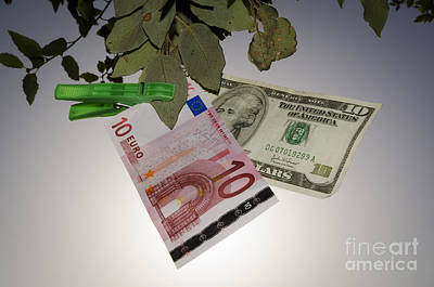 Money Hanging In A Tree Art Print by Mats Silvan