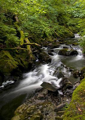 Mountain River Original by Svetlana Sewell