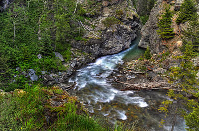 Photograph - Mountain Stream by Don Wolf