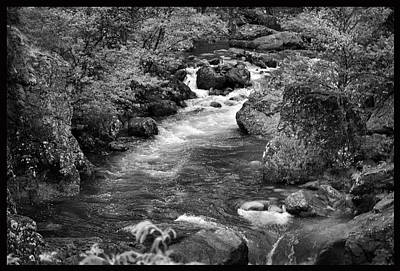 Photograph - Mountain Stream. by Terence Davis