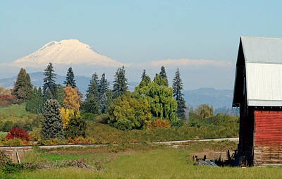 Photograph - Mt. Adams In The Country by Athena Mckinzie