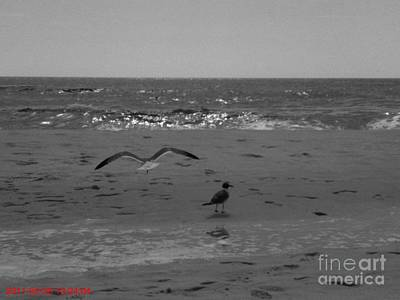 Navarre Beach Art Print by Janice Spivey
