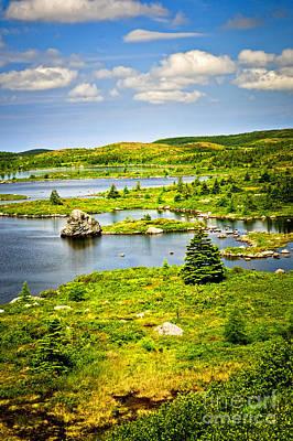Photograph - Newfoundland Landscape by Elena Elisseeva