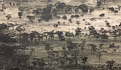 Nca Photograph - Ngorongoro Crater, Tanzania, Africa by Carson Ganci