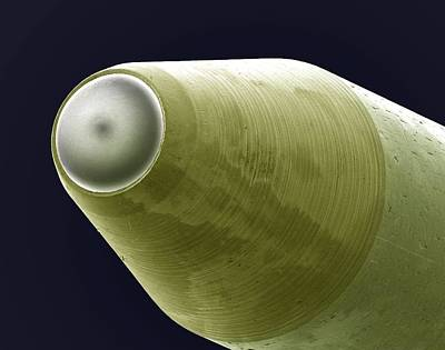 Common Item Photograph - Nib Of A Ballpoint Pen, Sem by Steve Gschmeissner