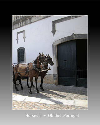 Photograph - Obidos Horses II Portugal by John Shiron