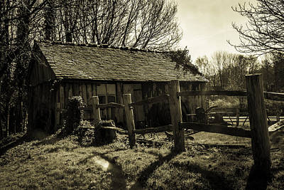 Old Fashioned Shed Art Print by Dawn OConnor