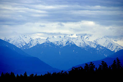 Photograph - Olympic Mountains by Marilyn Wilson