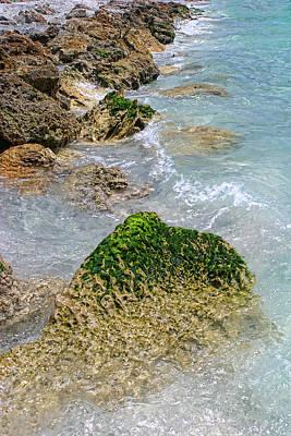 Photograph - On The Rocks by Shari Jardina