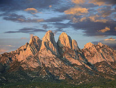 Mountain Range Photograph - Organ Mountains Near Las Cruces New by Tim Fitzharris