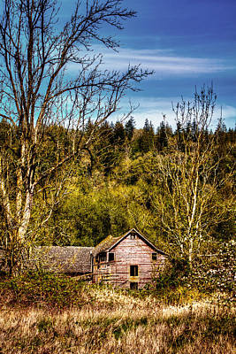 Orting Barn Art Print by David Patterson