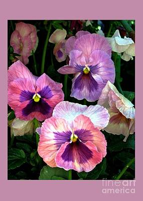 Digital Art - Pansies by Dale   Ford