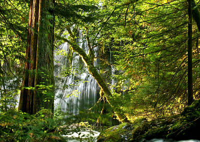 Water Filter Photograph - Panther Creek by Jean Noren