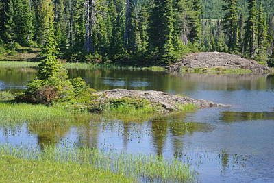 Photograph - Paradise Meadows Pond by Marilyn Wilson
