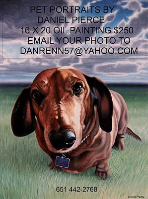Daniel Pierce Painting - Pet Portraits by Daniel  Pierce
