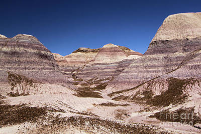 Photograph - Petrified Forest Blue Mesa by Adam Jewell
