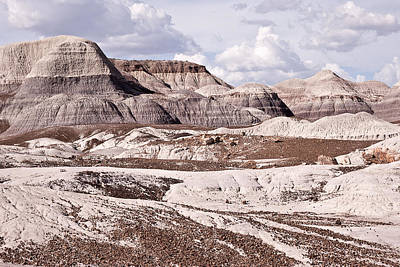 Photograph - Petrified Forest National Park by Melany Sarafis