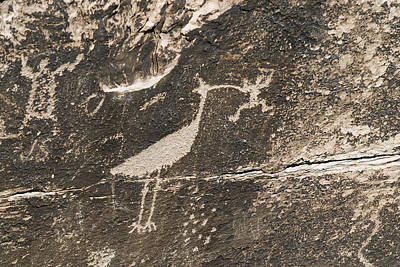 Newspaper Rock Photograph - Petroglyphs From The Puerco People by Rich Reid