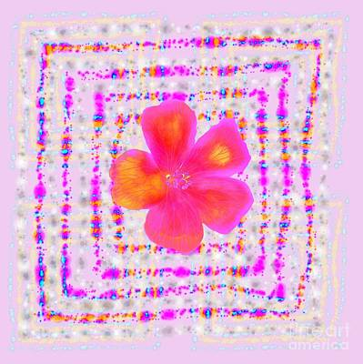 Digital Art - Pink On Pink by Barbara Moignard
