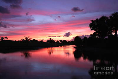 Plantation Preserve Sunset Art Print by Jennifer Zelik