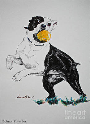 Tennis Ball Drawing - Play Ball by Susan Herber