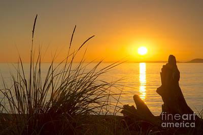 Target Threshold Nature - Puget Sound Sunset by Idaho Scenic Images Linda Lantzy