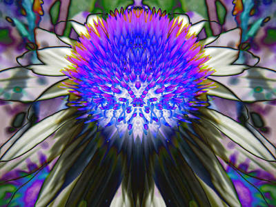 Abstracted Coneflowers Digital Art - Purple Coneflower by Michele Caporaso