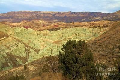 Photograph - Rainbow Canyon by Adam Jewell