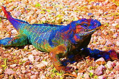 Rainbow Lizard Art Print by Katheryn Napier