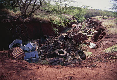Ravine Filled With Rubbish Art Print by G. Brad Lewis