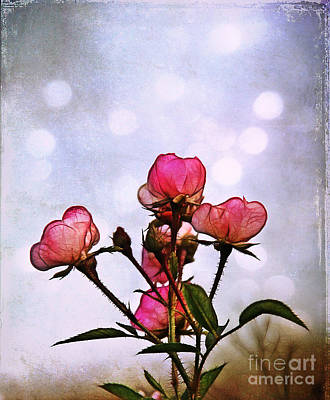 Reaching For The Light Art Print by Judi Bagwell