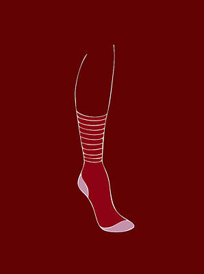Womens Art Painting - Red Sock by Frank Tschakert