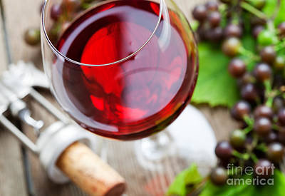 Photograph - Red Wine by Kati Finell