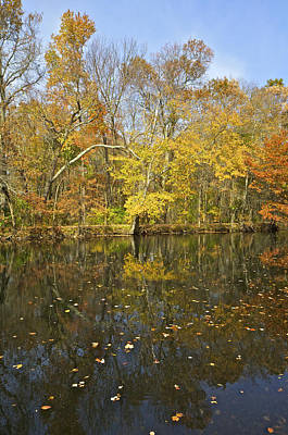 Photograph - Reflection Of Autumn Colors On The Canal by David Letts