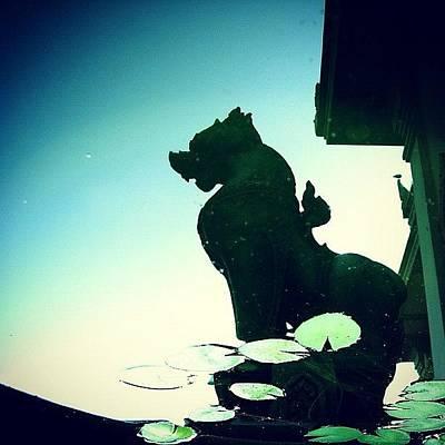 Dragon Photograph - Reflections by Carlos Macia Perez