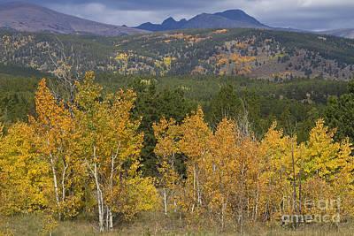 Colorado Autumn Landscapes Photograph - Rocky Mountain Autumn View by James BO  Insogna