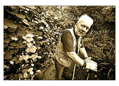 Photograph - Ron by Jez C Self