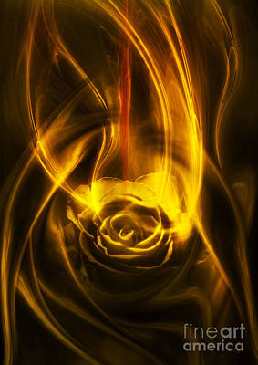 Rose With Red Flow Art Print