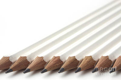 Row Of White Pencils Art Print