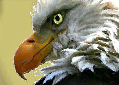 Digital Art - Eagle Eye by Carrie OBrien Sibley