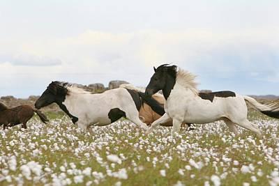 Running Horses Print by Gigja Einarsdottir