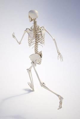 Running Digital Art - Running Skeleton, Artwork by Andrzej Wojcicki